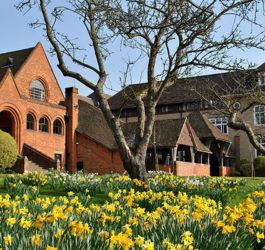 Літні канікули в Англії, Пітерсфілд | Bedales School