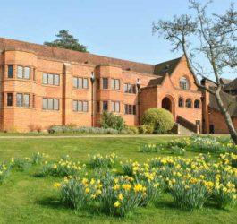 Летние каникулы в Англии, Питерсфилд | Bedales School