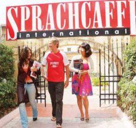 Курси англійської мови на Мальті, Сент-Полс-Бей | Sprachcaffe
