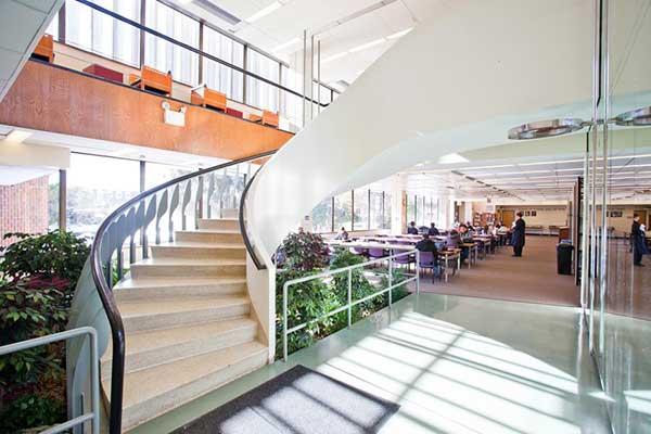 Adelphi University | США