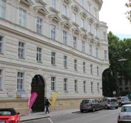 Зимові канікули в Австрії, Відень | Actilingua Academy