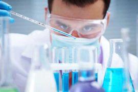 Кращі університети США за спеціальністю Біологія