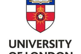 Индивидуальная консультация с представителем University of London