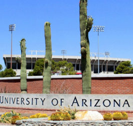 University of Arizona Global Campus, ОНЛАЙН, США