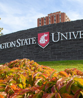 WASHINGTON STATE UNIVERSITY | CША